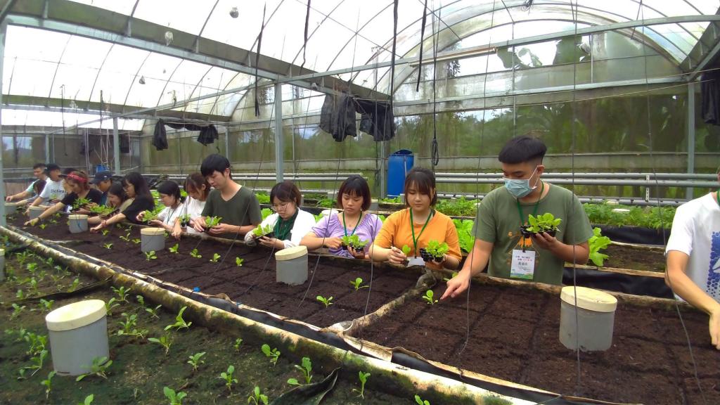 在臺港澳學生見學走讀營—山海地方創生故事