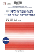 中國農村發展報告聚集「十四五」時期中國的農村發展